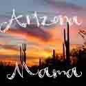 Arizona Mama Blog: Senseez, the Vibrating Pillow for Kids